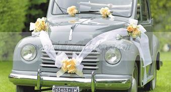 Decorazioni Matrimonio Arancione : Accessori cerimonia coccarde e addobbi auto il villaggio degli sposi